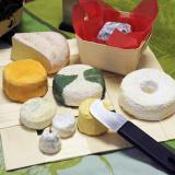 Assortiment de fromages sur pani-set